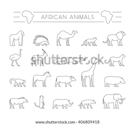 Modern set outline African animals. Line silhouette of gorilla, warthog, porcupine and dromedary. Geometric linear animals of Africa. The outline silhouette ostrich, hyena, springbok and zebra. - stock photo