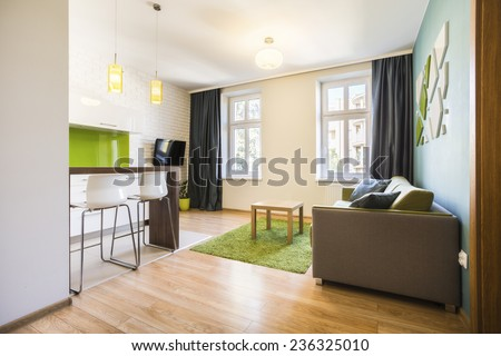 Modern small studio interior with green details - stock photo