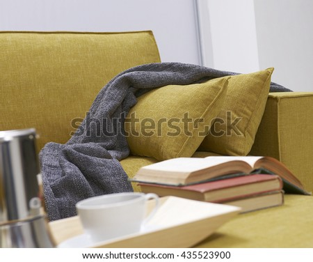 modern sofa and pillows
