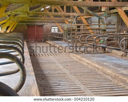 Modern style abandoned stable with cow cubicles - stock photo