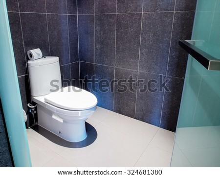 modern style toilet - stock photo
