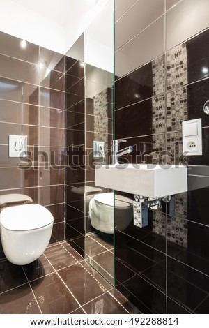 Modern toilet with brown tiles and big mirrors