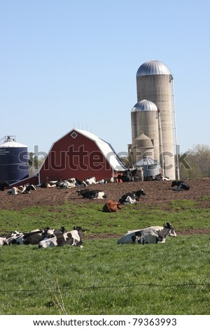 modern Wisconsin dairy farm in summer - stock photo