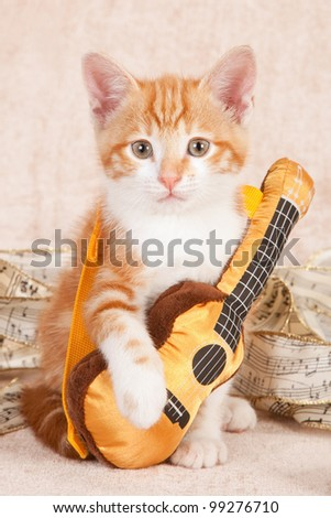 Moggie kitten with miniature toy guitar on beige background - stock photo
