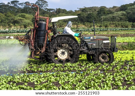 MOGI DAS CRUZES, BRAZIL, JULY 01, 2009. Spraying wheat crops field with tractor and sprayer