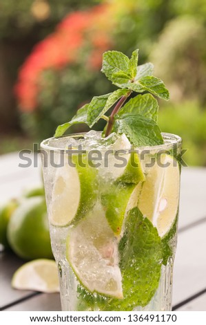 Mojito cocktail extreme close up in the garden,  a Cuban cocktail made with cuban rum, lime, sugar and a splash of soda - stock photo