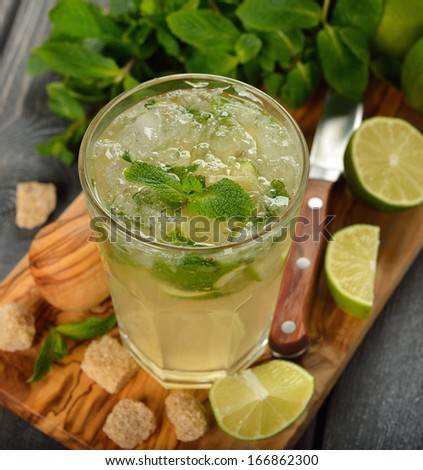 mojito cocktail on a gray background - stock photo