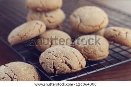 Molasses cookies - stock photo