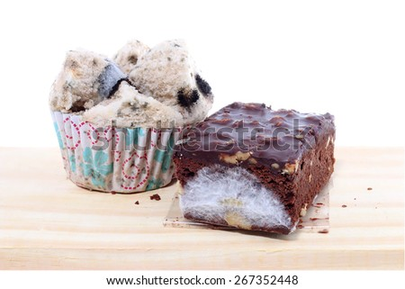 Mold growing on bread and  brownie - stock photo