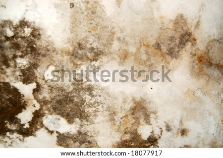 Mold growth and water stains on the ceiling of an abandoned house. - stock photo