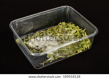 Molded vegetables in the plastic container - stock photo