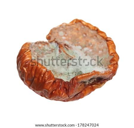 moldy apple isolated on white background, fungi - stock photo