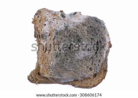 Moldy bread isolated on a white background - stock photo
