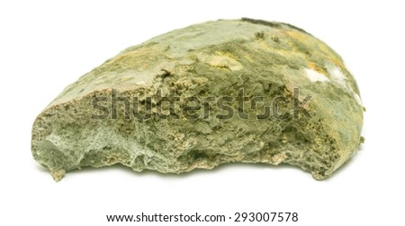 moldy bread on a white background