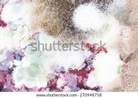 Moldy with Macro - stock photo