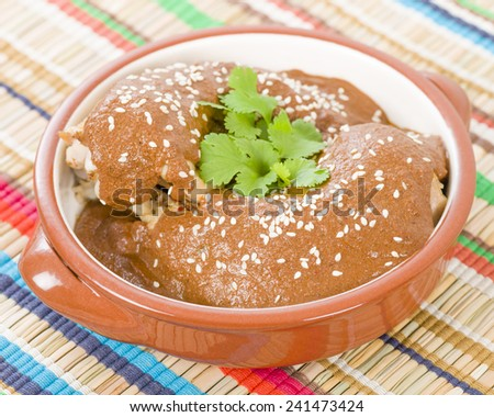 Mole Poblano - Chicken with mole sauce. Traditional Mexican food. - stock photo