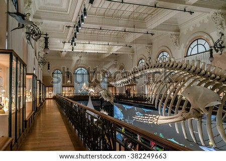 MONACO - JULY 8, 2014: Interior of Oceanographic Museum in Monaco - museum of marine sciences. Oceanographic Museum is home to the Mediterranean Science Commission.