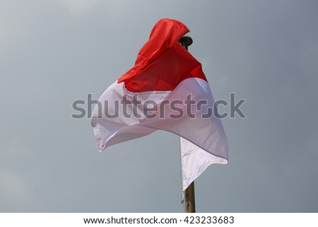 Monaco Waving Flag Against Blue Sky