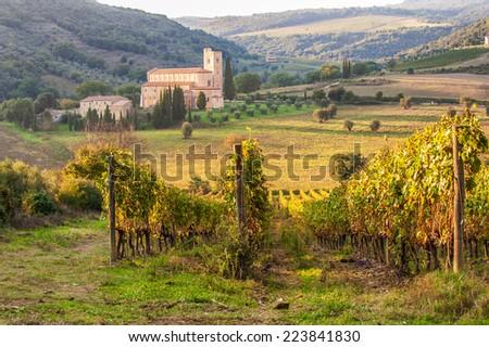 Monastery Sant'Antimo in the vineyards of Brunello, near Montalcino, Italy - stock photo