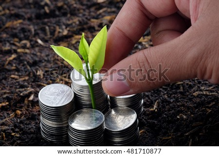 Money and plant with hand