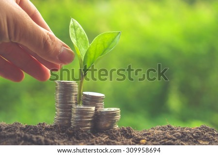 Money and plant with hand with filter effect retro vintage style - stock photo