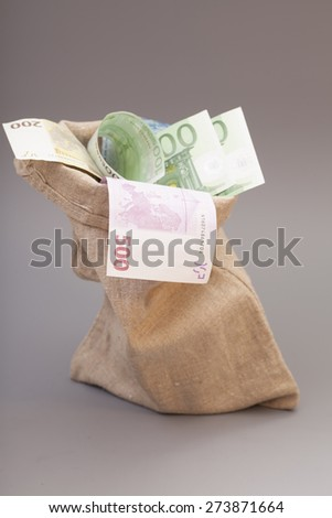 Money bag with euro isolated on gray background - stock photo