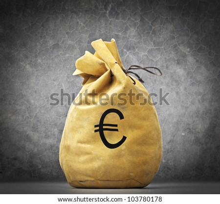 Money bag with euro sign on it - stock photo