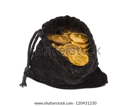 Money coins in bag on white background isolated - stock photo