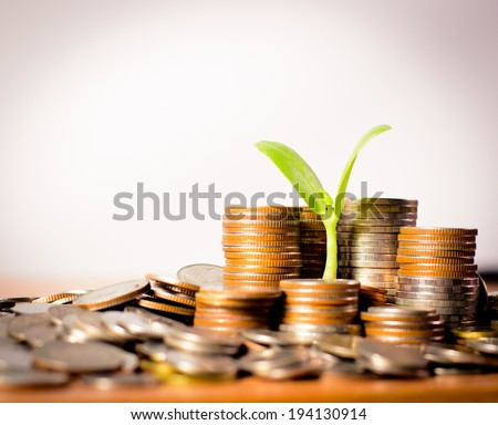 money coins pile and young tree on green background in banking concept - stock photo