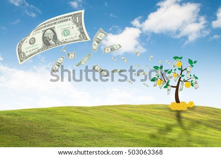 money dollar bills tree, concept growth business finance