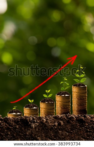 Money growing in soil