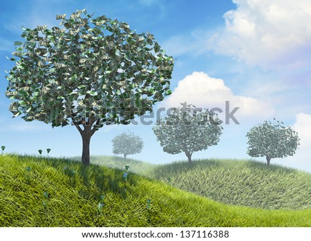 Money growing on trees in nature