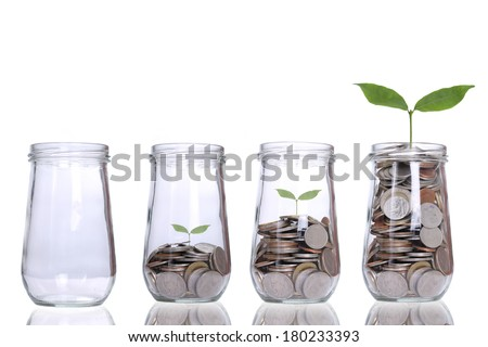 Money growing plant step with deposit coin  in bank concept