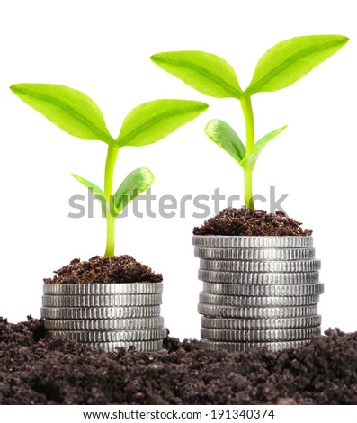 Money growth and savings concept.  - stock photo