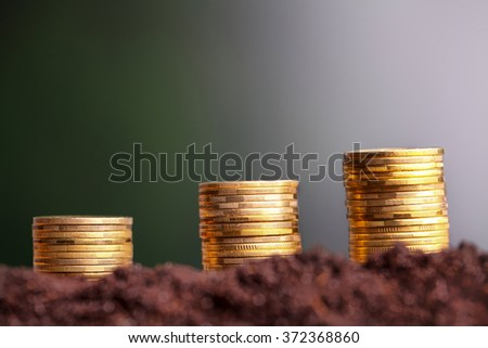 Money growth. Euro coins growing from soil. Money growth concept. - stock photo
