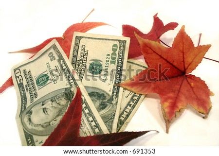 Money in fall leafs