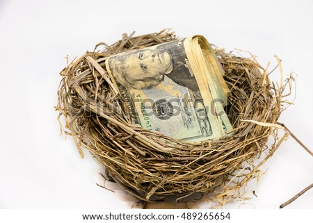 Money in the birds nest isolated on a white background