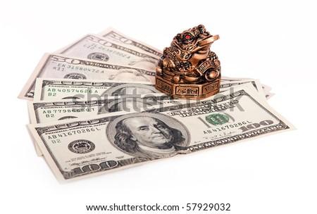 Money keeper frog - stock photo