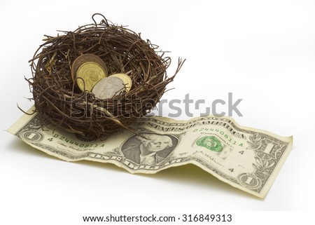 Money on nest, clipping path.