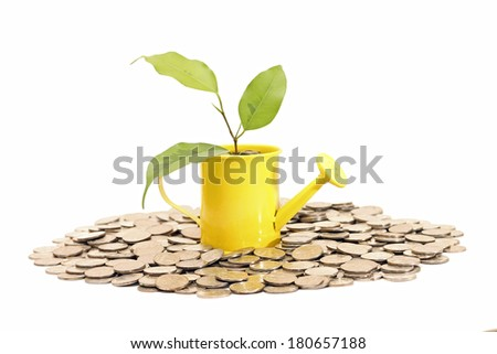 Money plant grows from watering can. Idea of savings - stock photo