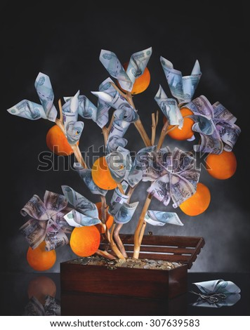 Money Tree. Imagination on a theme of investment. Wisely invested money should bring a good harvest. The image is made from multiple files.