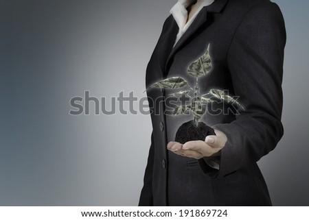money tree on business woman - stock photo