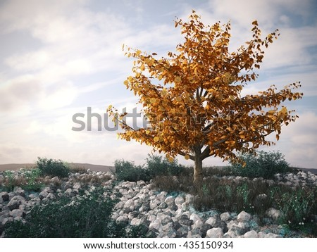money tree on desert landscape - symbol of successful business concept 3d illustration - stock photo