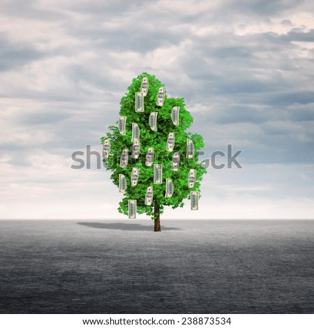 Money tree outdoors. - stock photo