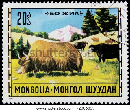 MONGOLIA - CIRCA 1971: A post stamp printed in Mongolia shows bisons , series, circa 1971