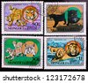 MONGOLIA - CIRCA 1979: A stamp printed in Mongolia shows four kinds of different wild cats , circa 1979. - stock photo