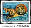 MONGOLIA - CIRCA 1979: A stamp printed in Mongolia shows wild cats Lions, series, circa 1979 - stock photo