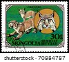 MONGOLIA - CIRCA 1979: A stamp printed in Mongolia shows wild cats Lynx, series, circa 1979 - stock photo