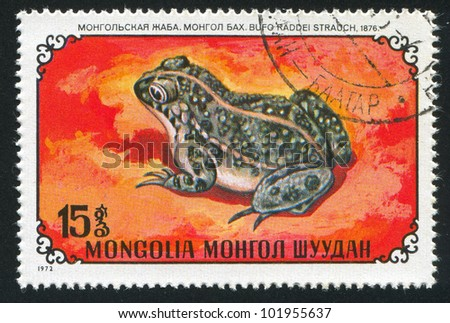 MONGOLIA - CIRCA 1972: stamp printed by Mongolia, shows  frog, circa 1972