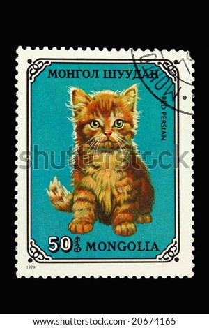 Mongolian postage stamp with red persian cat - stock photo